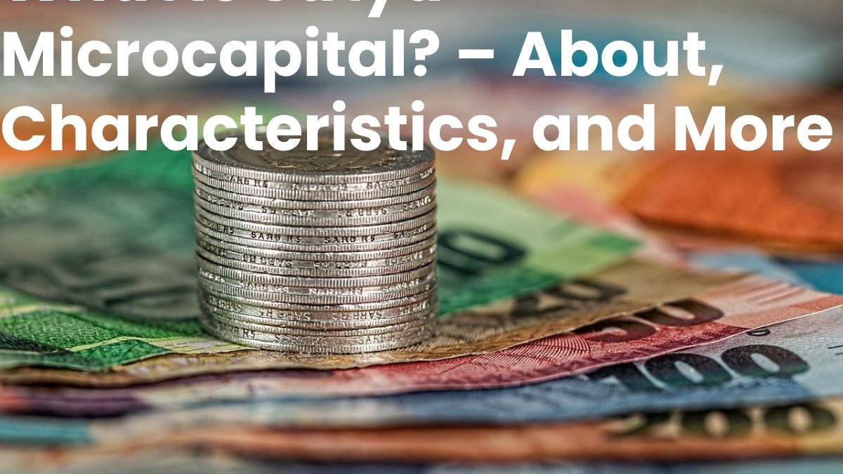 What is Satya Microcapital? – About, Characteristics, and More
