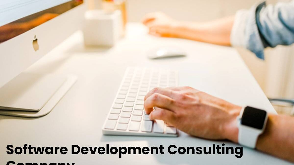 Software Development Consulting Company